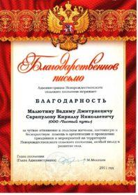 Благодарность Малютину Вадиму Дмитриевичу