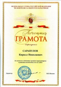 Грамота Сарапулову Кириллу Николаевичу